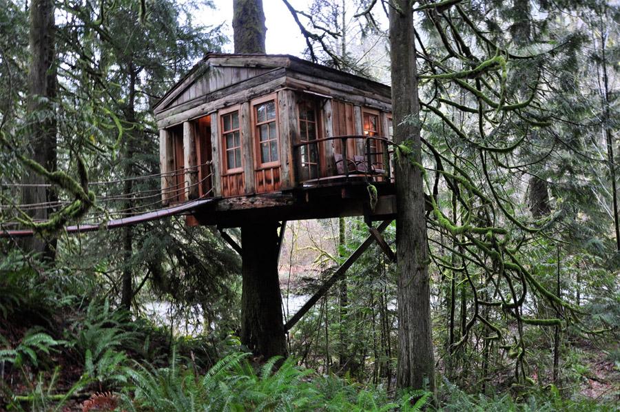 Treehouse in Issaquah  Quaint