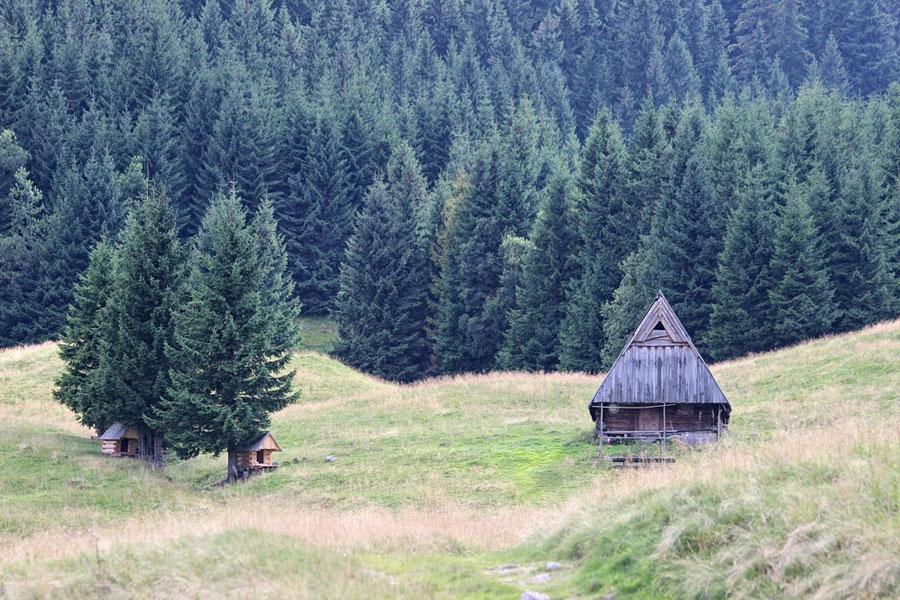 shepard-hut