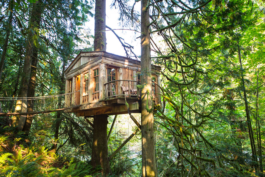 Image result for treehouse point in seattle