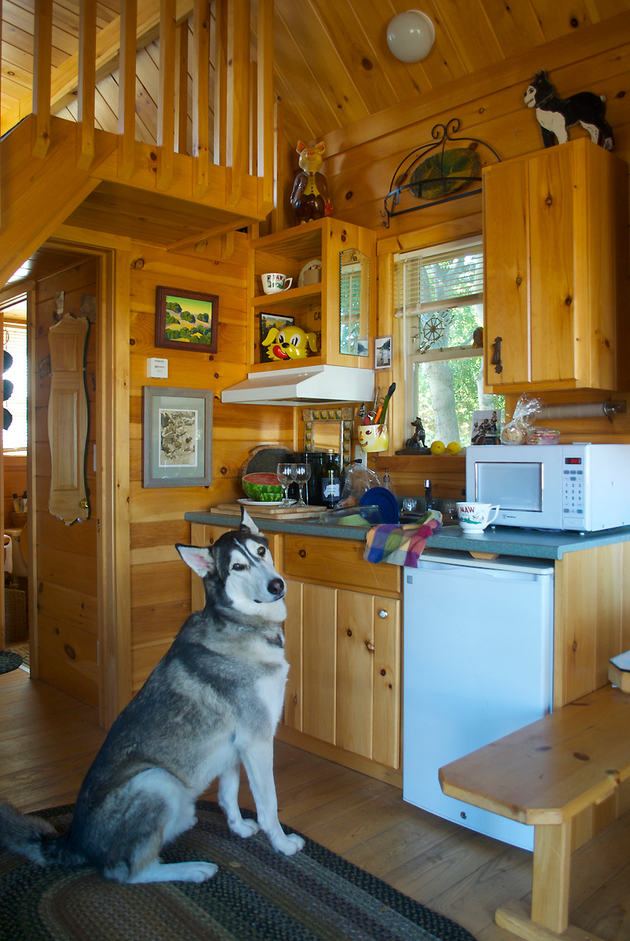BADRAP Tiny Cabin Tiny House Swoon