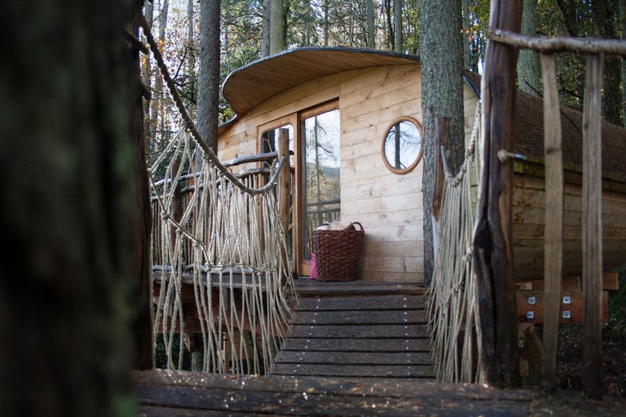 gwdy-hw-treehouse-1