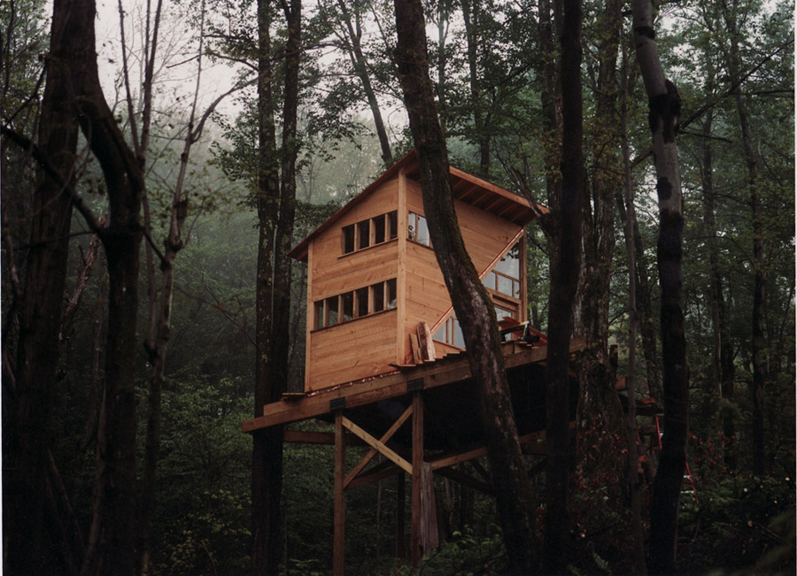 The Wee Treehouse