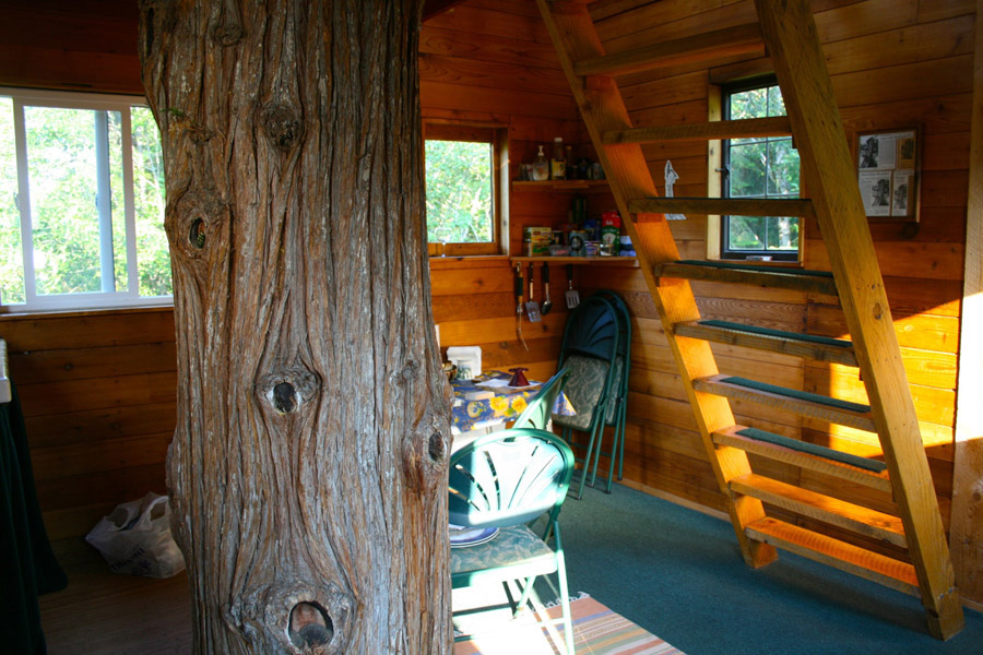 cedar-creek-treehouse-4