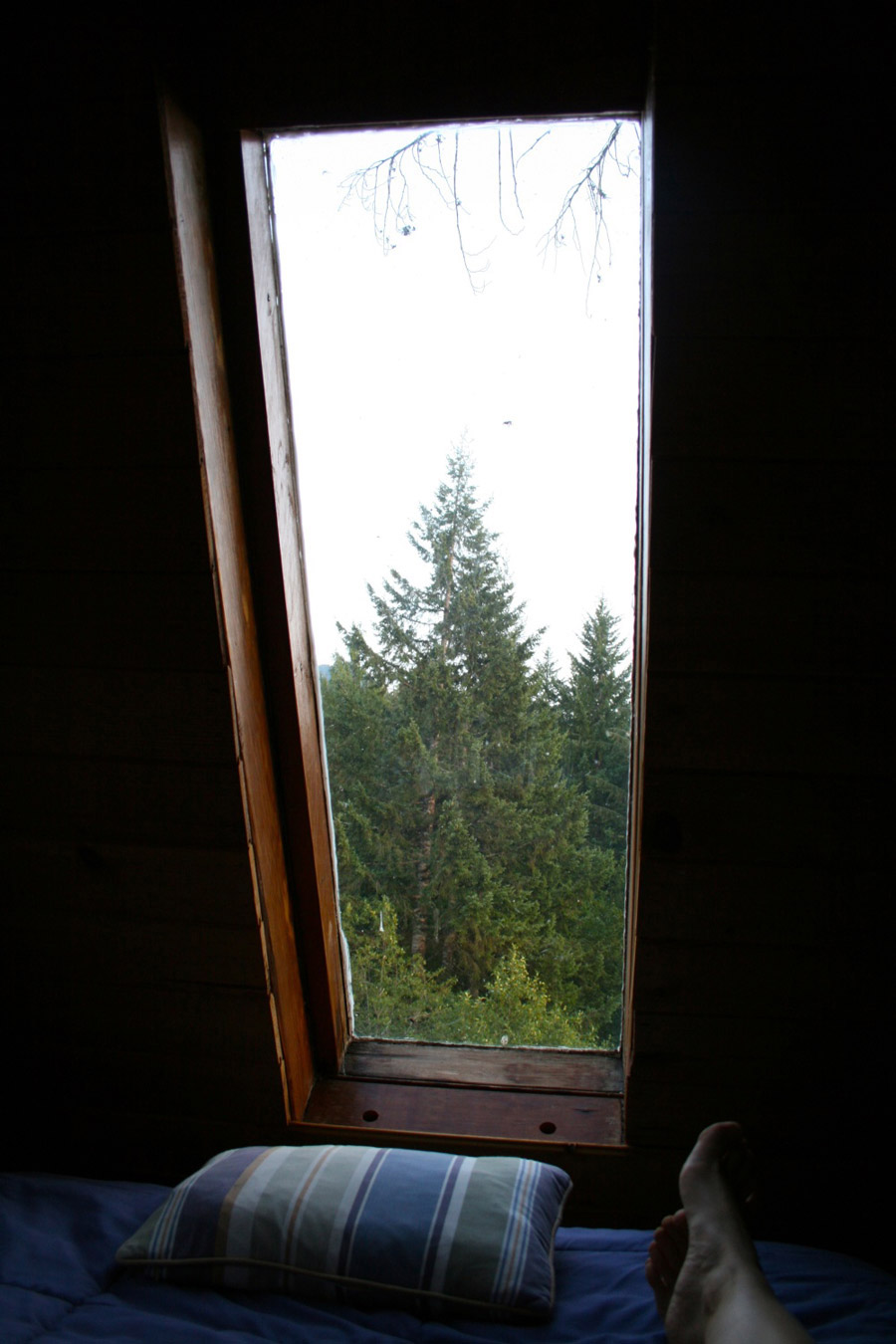 cedar-creek-treehouse-8