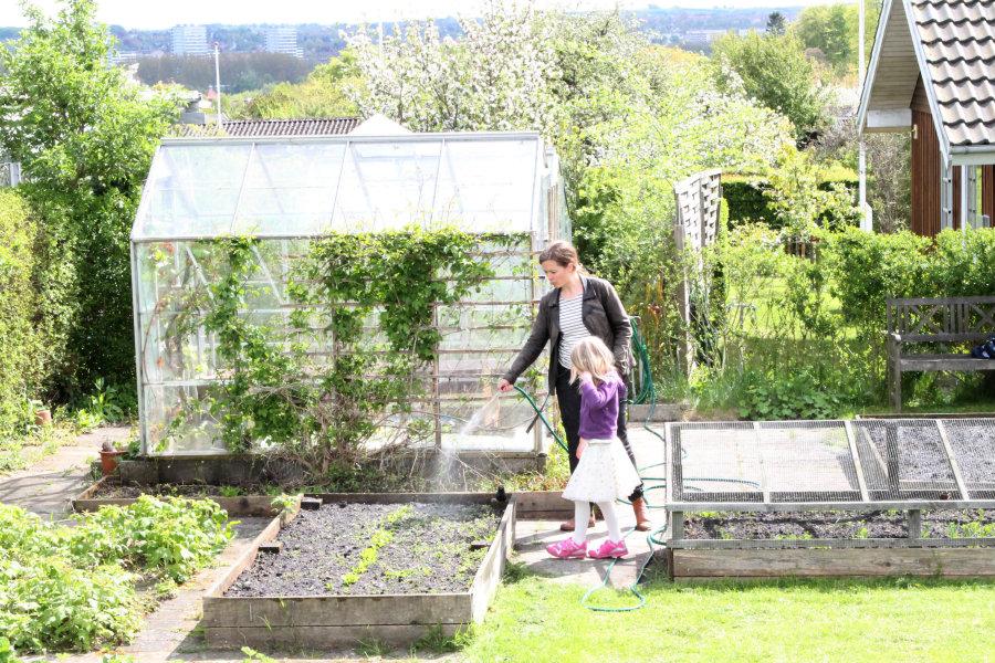 garden-allotment-house-7