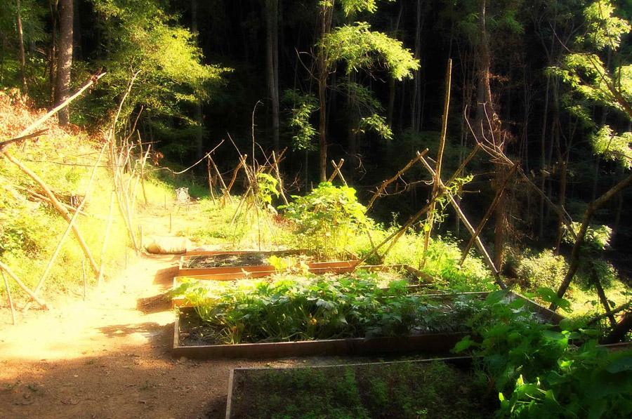 green-mountain-treehouse-11