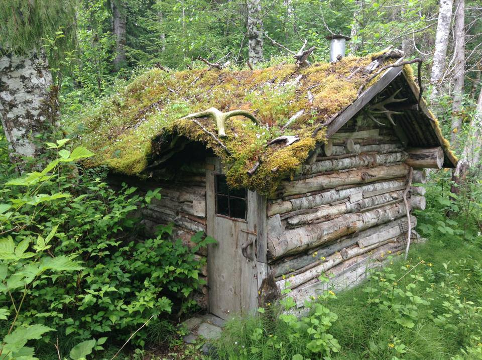 Bella Coola Cabin Tiny House Swoon
