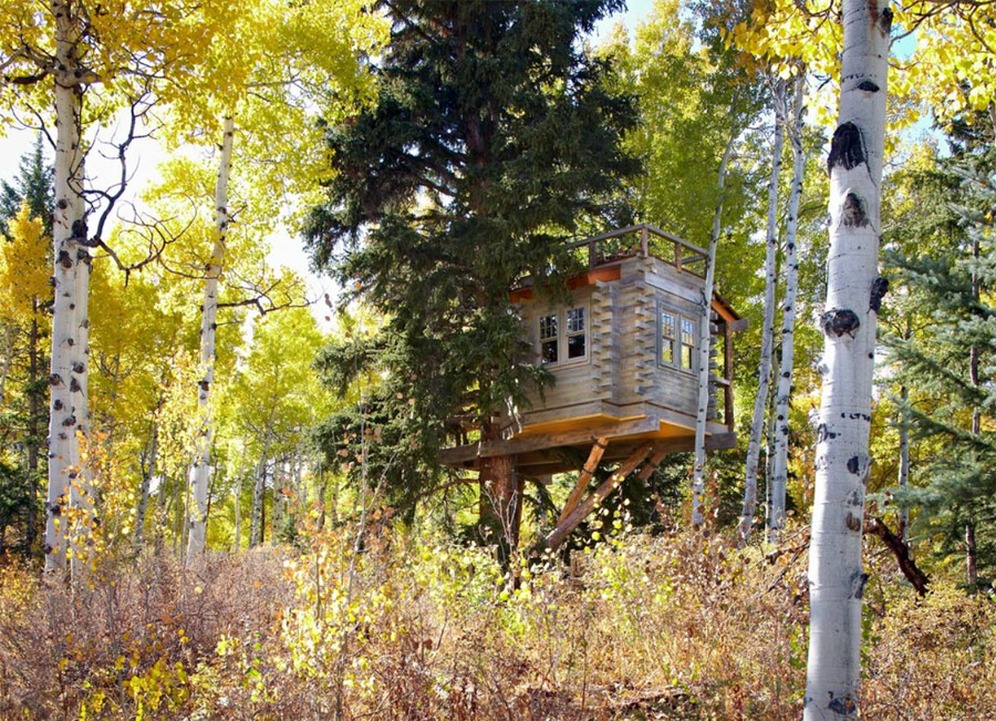 denver-treehouse-5