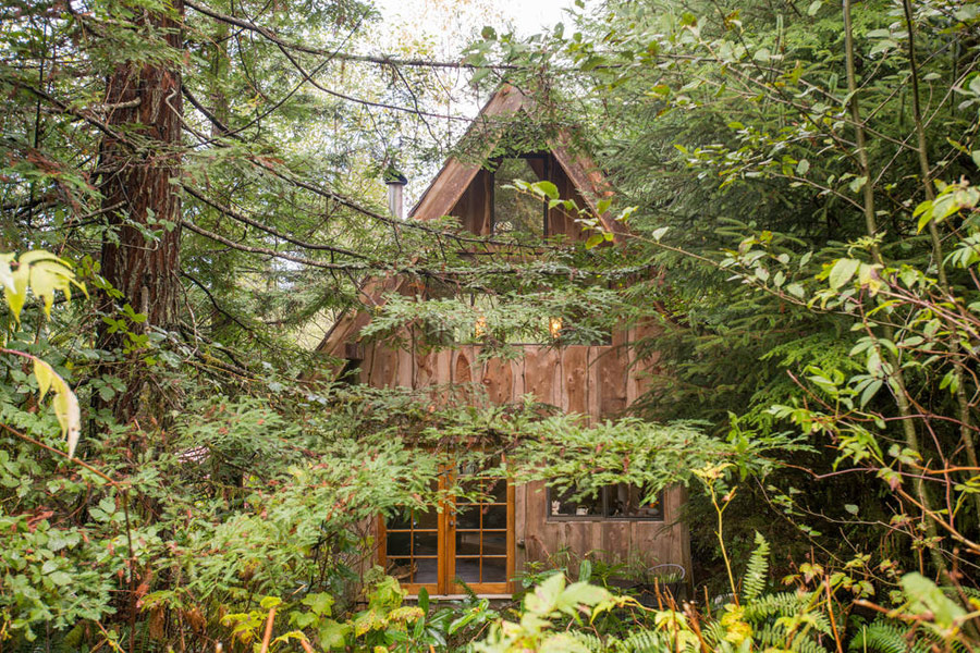 japanese-forest-house-12