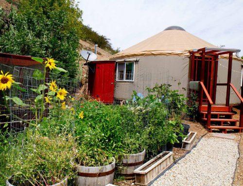 Malibu Yurt