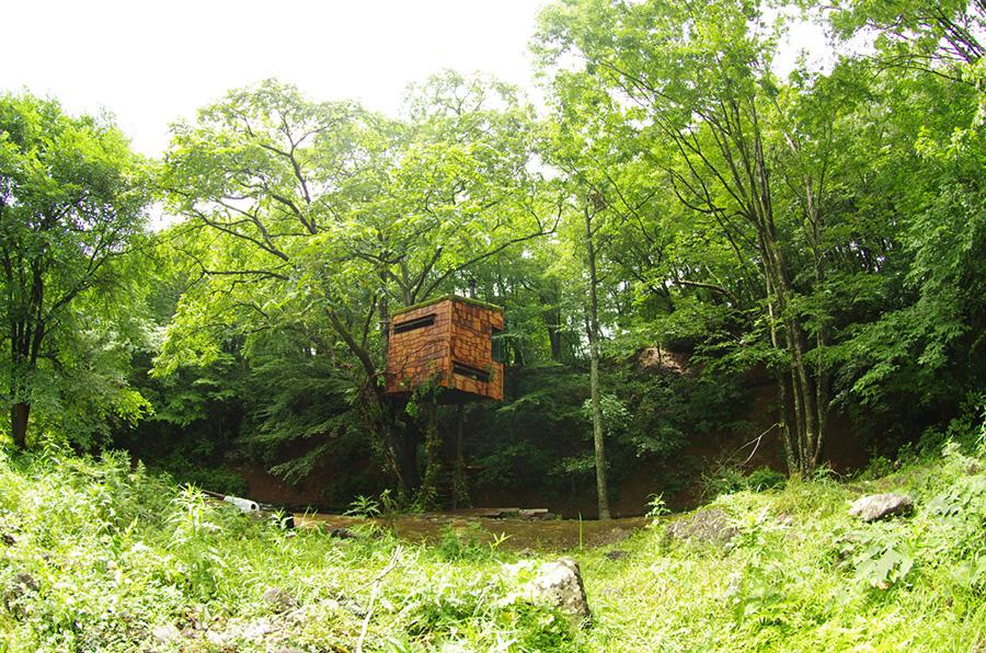 nasua-treehouse-takashi-kobayashi-1