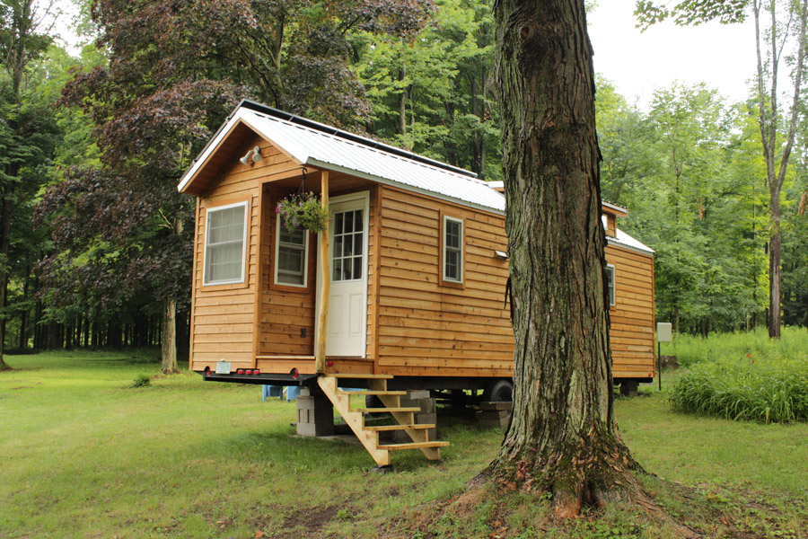 erin-and-dondis-tiny-house-1