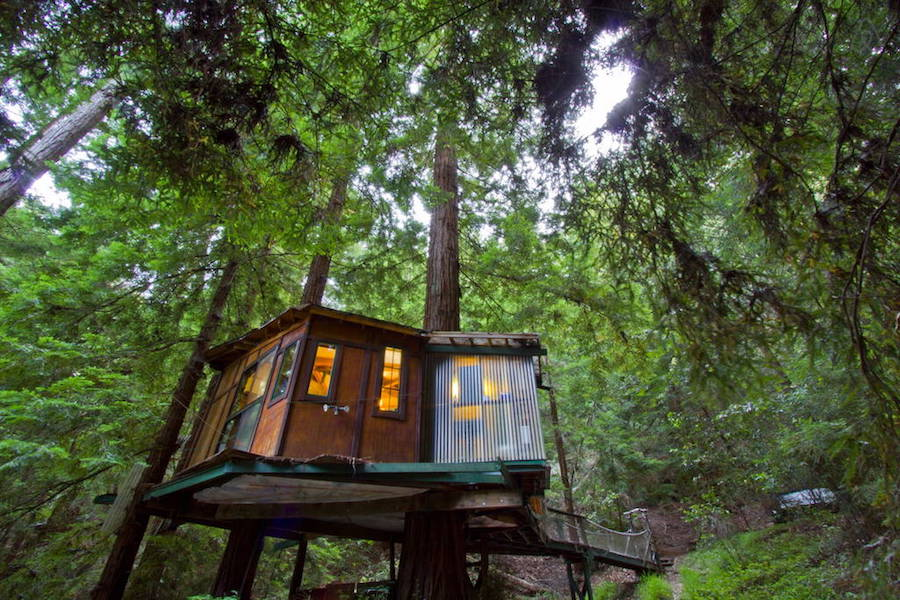 redwood-treehouse-1
