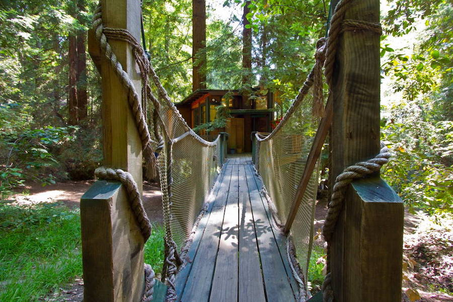 redwood-treehouse-2