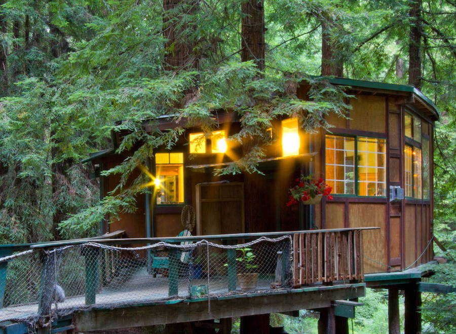 redwood-treehouse-8