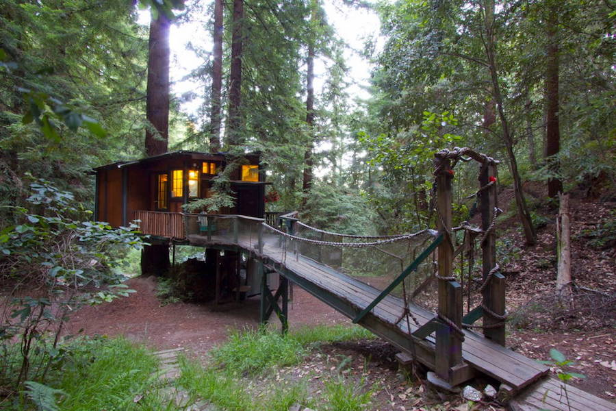 redwood-treehouse-9