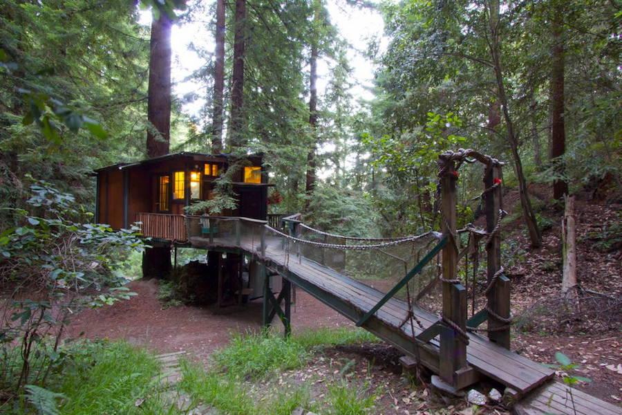 redwood-treehouse-9