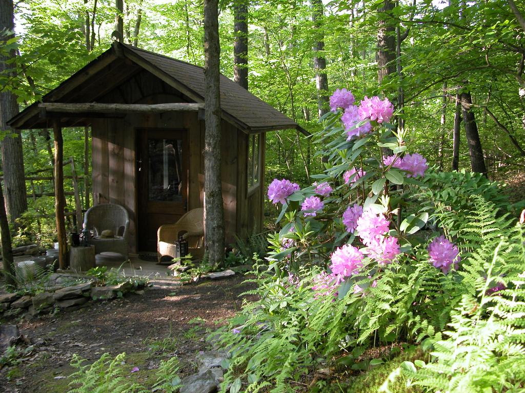 ithaca-cabin-1