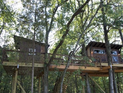 big-nick-cherry-treesort-treehouse-china-grove-north-carolina-1