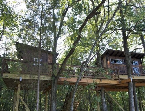 Big Nick Treehouse
