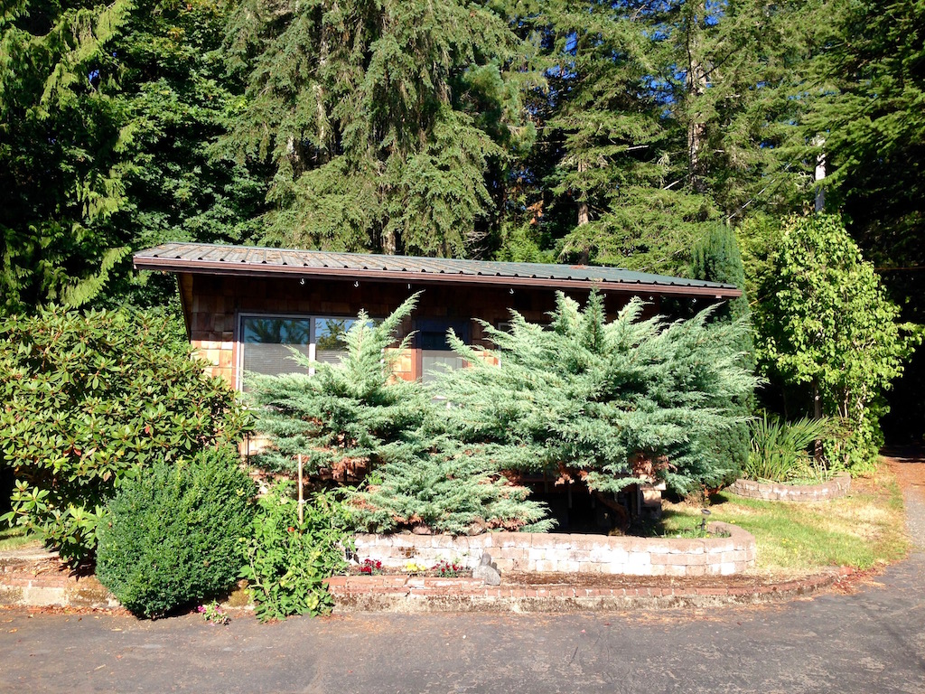 forest-cabin-1