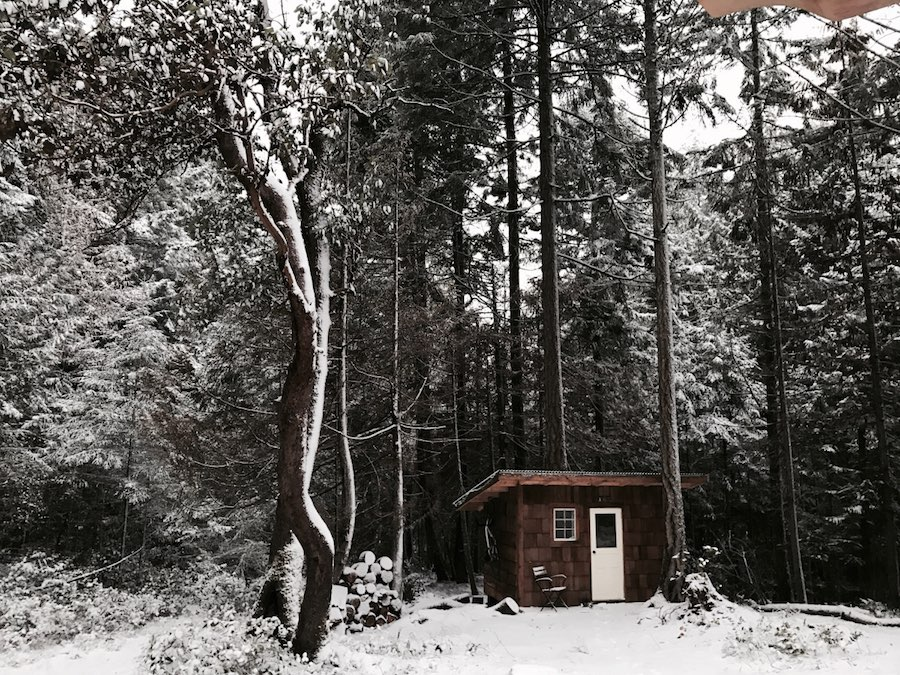 micro-shed-guest-house-1
