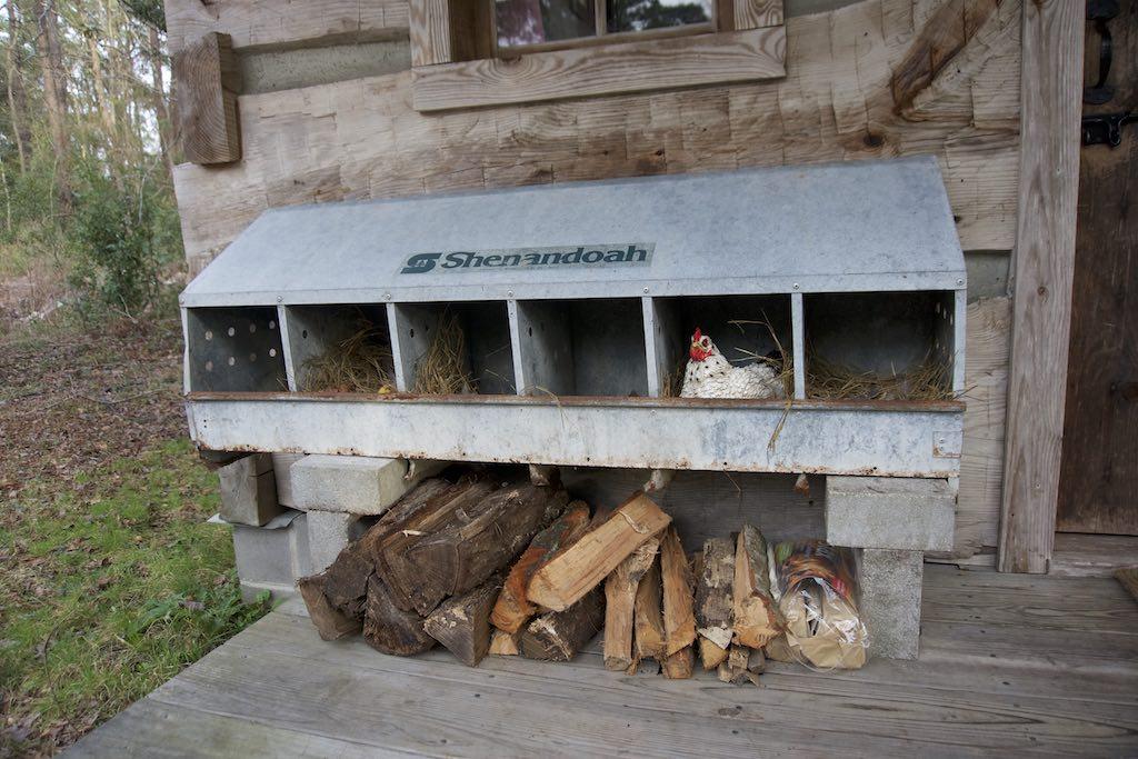 tiny-cabin-3
